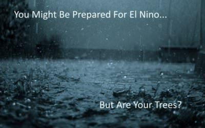 Prepared for El Nino?