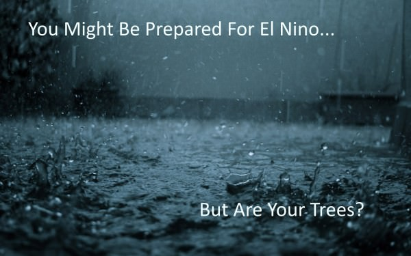 Prepared for El Nino?
