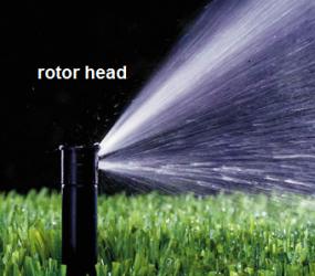 Improper Watering for Current Landscape?