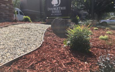 How to Enhance Your Water Wise Landscaping